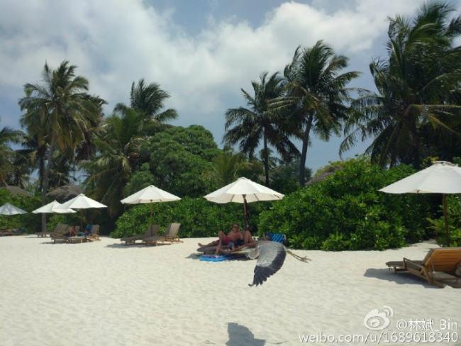 Xiaomi Mi 5 First Camera Sample Revealed