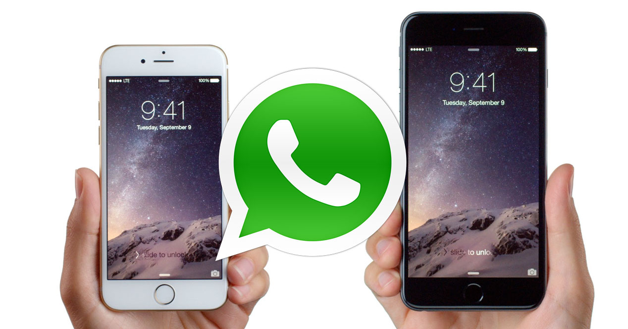 Send PDF File on WhatsApp in iPhone